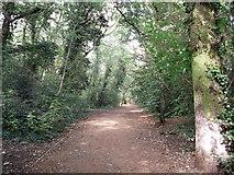 TQ3870 : Green Chain Walk in Beckenham Place Park by David Anstiss