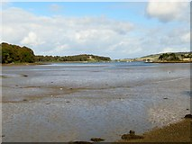 J5849 : Castleward Bay from the A25 by Eric Jones