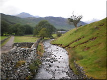 NY2101 : River near the foot of the Hardknott Pass by Peter S