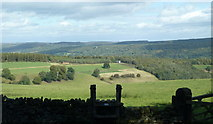 SK2468 : View from the forest boundary wall by Andrew Hill