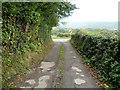SO3205 : Capel Ed Lane reaches the A4042 north of Penperlleni by Jaggery