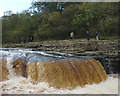 SE0188 : Visitors at Lower Force, Aysgarth Falls by Karl and Ali