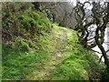 NT7562 : Footpath by the Whiteadder Water by Maigheach-gheal