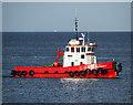 J5082 : Tug 'Samson' in Bangor Bay by Rossographer