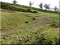 NT7359 : Path near Whitchester Lodge by Maigheach-gheal