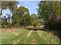 SO9942 : Bridleway between Netherton & Cropthorne by Liz Stone