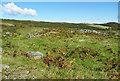 NS0558 : Dun Scalpsie by Anne Burgess