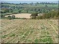 SE2506 : Parallel stubble, Gadding Moor by Christine Johnstone