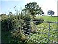 SE2607 : Footpath sign, Lane Head Road by Christine Johnstone