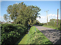 ST5684 : Deep ditch by Pilning Street  by Robin Stott