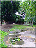 TQ1979 : Japanese water garden in Gunnersbury Park by Thomas Nugent