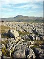 SD7075 : Limestone pavement, Twisleton Scar End by Karl and Ali