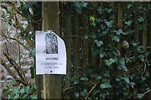 SW4028 : Have you seen this owl? by hayley green