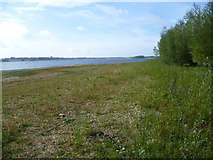 SK9308 : The shore of Rutland Water by Marathon