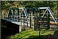 SH5943 : Bridge Over Nanmor, Gwynedd by Peter Trimming
