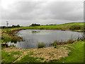 SD7417 : Lodge Near Wickenlow Hill Farm by David Dixon