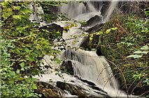 J4681 : Waterfall, Crawfordsburn Country Park by Albert Bridge