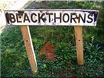 TM2743 : Blackthorns sign by Geographer