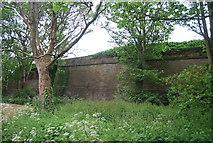 NU0052 : Bastion, Berwick ramparts by N Chadwick