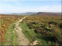 SE4699 : Scarth Wood Moor by Richard Webb