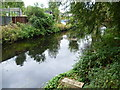 TQ2572 : River Wandle from the Wandle Trail by Marathon