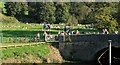 ST7964 : 2011 : Mill Island Claverton on a hot October day by Maurice Pullin