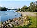 NS3882 : Loch Lomond Shores by Lairich Rig