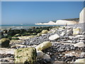 TV5595 : Exposed beach at Birling Gap by Oast House Archive