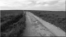SE4996 : Miley Pike Hill by Richard Webb