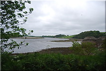 NT9953 : River Tweed by N Chadwick
