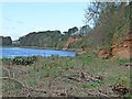 NY3561 : Cliffs at Rockcliffe by Oliver Dixon