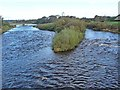 NY3768 : Island in the River Esk by Oliver Dixon