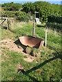 SX3553 : Broken trough, Portwrinkle by Derek Harper