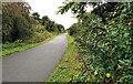 J3973 : The Comber Greenway, Belfast (8) by Albert Bridge