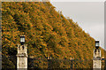 J3974 : Autumn trees, Stormont, Belfast by Albert Bridge