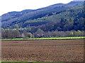 NN9851 : Arable land, Westhaugh of Tulliemet by Maigheach-gheal