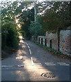 SU8283 : Shepherds Lane by Graham Horn