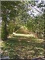 TM2540 : Bridleway to Keepers Cottage & Felixstowe Road by Geographer