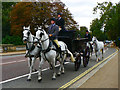 TQ2680 : Some of the Queen's Horses and Some of Her Men - Hyde Park by Mick Lobb