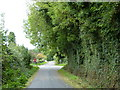 N8874 : Leafy crossroads by James Allan