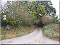 TM2541 : Holly Lane, Bucklesham by Adrian Cable