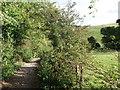 TQ3958 : Bridleway to Beddlestead by David Anstiss