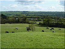 O0072 : Great mound at Newgrange by James Allan