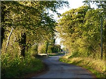 N9866 : Sunny side road by James Allan