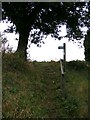 TM2838 : Stour & Orwell Walk footpath to Back Lane by Adrian Cable