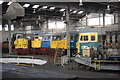 SK4175 : Locomotives and an engine inside Barrow Hill roundhouse by Roger Templeman