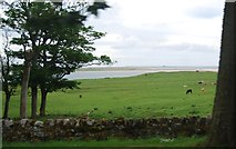 NU1535 : View towards Holy Island by N Chadwick