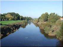 SE4843 : River Wharfe, Tadcaster by JThomas