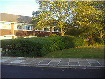 TQ1672 : Houses on Riverside Drive, Ham by David Howard