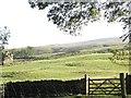 SD8879 : Whipperston hillside by Christine Johnstone